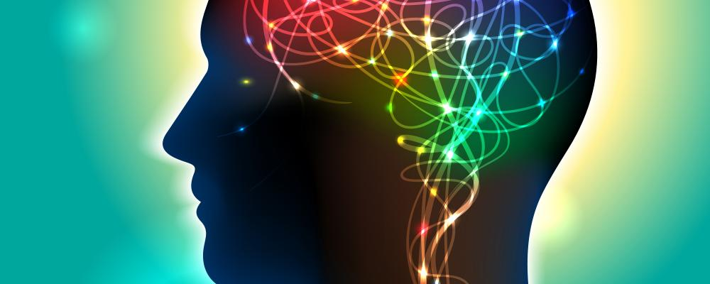 Cognitive Neuroscience | UC Psych